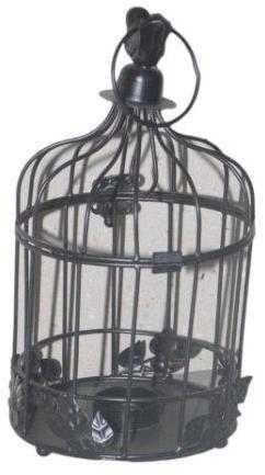 IJzeren Windlicht Vogelkooi